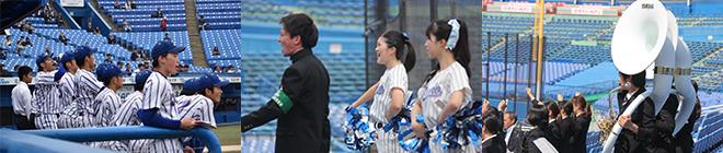 硬式野球部   立正大学 強化クラ...